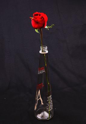 瓶子中的一支红玫瑰