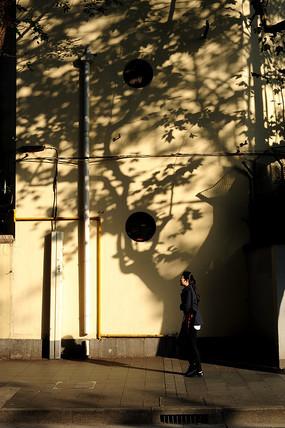 影子中的女人