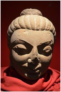 北方邦马图拉政府博物馆佛头像