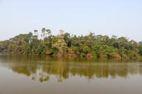 倒影绿树的湖面