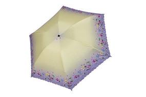 黄紫色雨伞