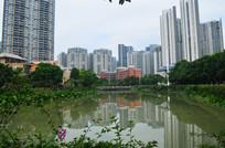 湖景大厦风景图片