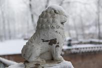 冬日雪地石狮子