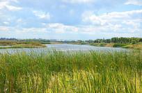 哈尔滨江北湿地公园