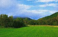 田间风景画