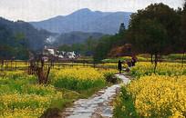 乡村田园风景
