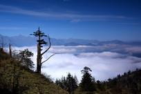 牛背山四人同的云海和远山