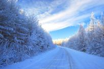 冬季林区公路景观