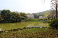 鼋头渚水池