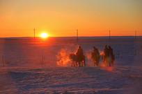 冬季日出中的骑手骏马