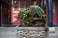 孔庙的石头