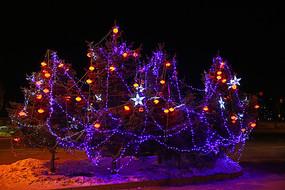 树枝上的彩灯