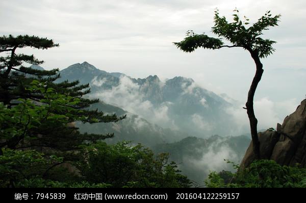 五岳黄山图片