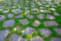 绿色石板路