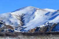 雪山山下牧场马群