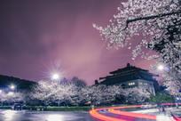 武汉大学樱花旅游风光夜景