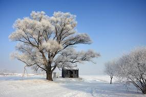 雾凇岛龙王庙