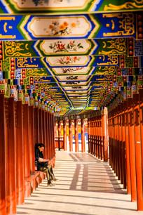 文化长廊里的阳光