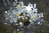 许愿池硬币