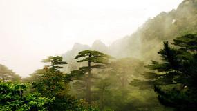 安徽黄山五岳风光