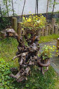 木雕展示根雕