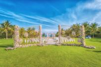 花卉草坪新婚布置