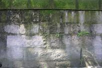 长草的石头墙