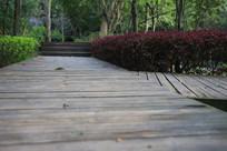 木板连成的小路