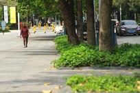 城市绿道上孤独老人徒步行走