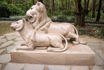 雄狮和雌狮雕塑