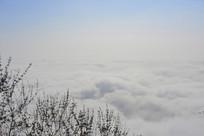 半空中的云海