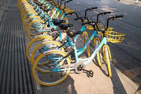 成排的共享单车