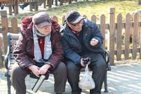 公园休息的老人