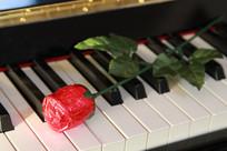 玫瑰花包装的巧克力