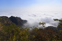 太行山河南段林州境内山间云海