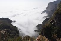 太行峡谷内的云海