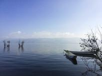 大理洱海湖畔树林停船风景