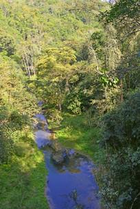 热带雨林河谷