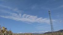 蓝天白云信号塔图片