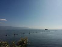 环湖西路旁的洱海护栏风光