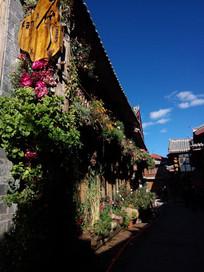 丽江古城街道边挂满花草的小楼