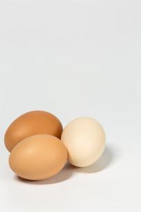 纯色背景下的鸡蛋