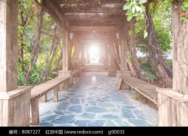 公园走廊图片