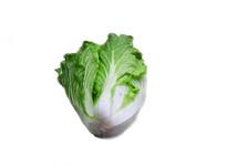 绿色白菜细节摄影图