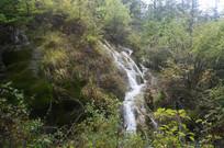 树林中瀑布