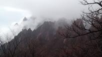 安徽黄山云雾翻滚的山间美景