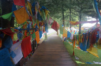 藏族经幡木板道