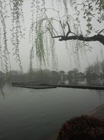 晨雾中的西湖边木板引桥