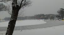 冬天里的湖图片