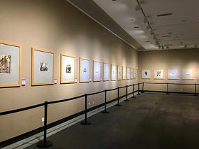 画廊展馆布置
